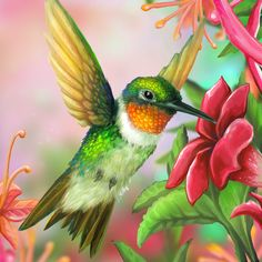 Free Hummingbird Paintings and Prints | Layer Paint Ruby Throated Hummingbird by charfade