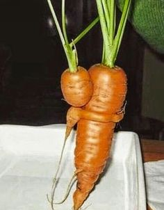 Pictures of weird shaped fruits & vegetables that look like other things like animals, body parts & other things. See these crazy shaped fruit & veggies! Amazing Funny Pic, Amazing Photos, Awesome, Atkins, Baby Carrots, All Vegetables, My Best Recipe, Food Waste, Belleza Natural