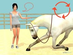 Teach a Horse to Bow Properly Step by step! Easy steps, gonna try it with Chief!