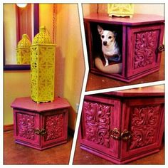 "My moroccan ""Dog Bed"" made from a old end table!! Perfect to hide Minnie's bed :)"