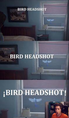 Bird headshot xD