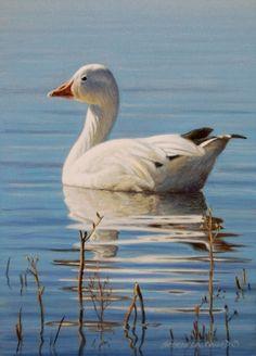Snowbird 7x5, painting by artist George Lockwood