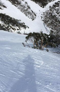 Yes! Australia has great snow skiing! Moments after the author snapped this pic, he skied like a god all the way to the bottom.