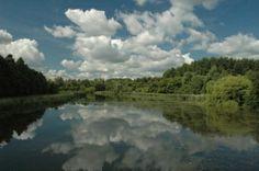 Hollandse wolkenluchten. Stapelwolken: cumulus - Biesbosch Dordrecht
