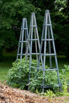 obelisk project for vegetable garden