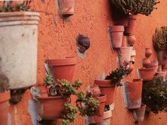 Terra cotta pots perfect for herbs outside your kitchen make a sculptural feature when embedded in concrete or plastered wall