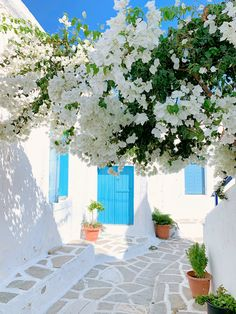 Beautiful Places To Travel, Great Places, Places To Go, Vacations To Go, Dream Vacations, Wallpaper Travel, Santorini House, Paros Island, Patio Interior