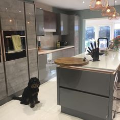 A kitchen is for the whole family! Like this little pooch is proudly displaying his Milano kitchen in Dove and Concrete Oak Open Plan Kitchen Diner, Open Plan Kitchen Living Room, Home Decor Kitchen, Kitchen Interior, Home Kitchens, Kitchen Dining, Family Kitchen, Dining Area, Latest Kitchen Trends