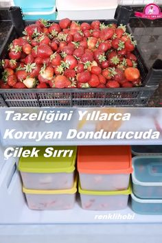 Food Preparation, Food Storage, Tuna, Ham, Strawberry, Food And Drink, Pasta, Dishes, Fruit