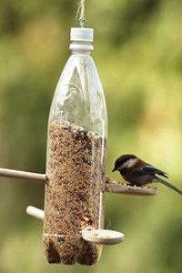 Bird Feeder, great for a girl scout craft. They could decorate the bottle too. Using resources wisely