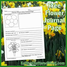 GARDENS: A great printable for young students to take to a garden with them. They choose a flower to describe on this worksheet.