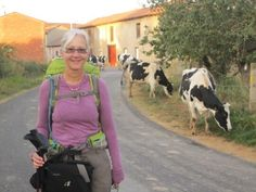 Day by day blog of a woman walking the Camino by herself.