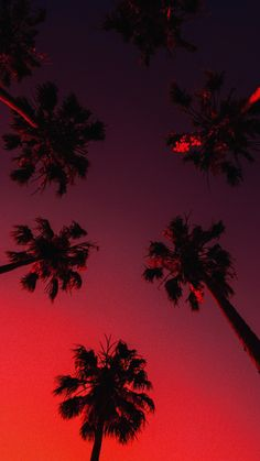 aesthetic burgundy iphone wallpapers screens screen backgrounds lock fall sky glow palm trees tree grunge pink 80s sunset apple pastel