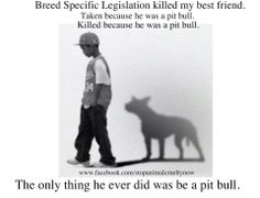 BSL hurts more than the breed