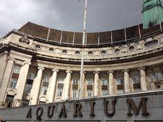 Sea Life London Aquarium in London, Greater London