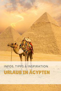 Bei uns bekommt ihr Infos und Tipps rund um das Thema Urlaub in Ägypten!