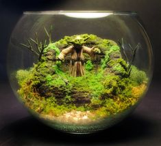 Daj-this is so awesome. Yoda Deluxe Zen Garden  Dagobah Terrarium / Diorama by Megatone230, $118.00