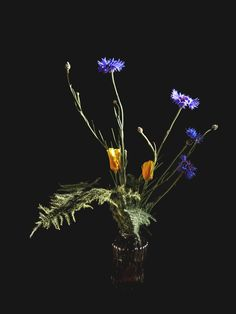 SPRING FLOWERS | SIMONE EISATH