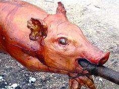 How to Roast a Pig: 20 Steps (with Pictures) Roast Recipes, Barbecue Recipes, Yummy Recipes, Pig Roast Party, Medieval Recipes, Lechon, Pig Farming, Smoking Recipes, Bbq Party