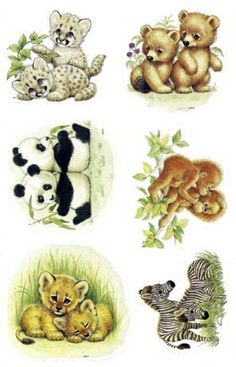 Current stickers - Ruth Morehead - baby animal pairs