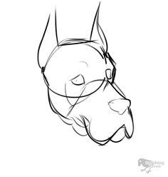 Noble Dog Great Dane D&D companion portrait, named Alexander | GIF process by Smirking Raven