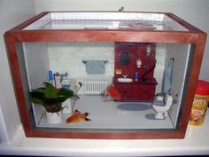 Decorate your aquarium to look like a dollhouse! Measure your aquarium, cut pieces of wood to line each edge of the tank and assemble the wood frame. Cut pieces of tile to fit in your tank like a dior Aquarium Terrarium, Diy Aquarium, Wall Aquarium, Aquarium Setup, Terrarium Diy, Cool Fish Tanks, Unique Fish Tanks, Small Fish Tanks, Weird Fish