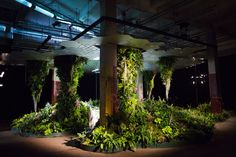 It's not an urban sci-fi fantasy: Someone is actually building a leafy underground park below Delancey Street on Manhattan's Lower East Side. The Lowline is a plan to turn an abandoned trolley terminal there into a public green space, using special technology that pipes in sunlight beneath the street's surface.