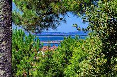 Cambados Galice Espagne 388 - above the Santa Mariña Ruins