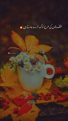 Best Urdu Poetry Images, Love Poetry Urdu, Gods Grace Quotes, Aesthetic Captions, Butterfly Black And White, Poetry Lines, Snap Quotes, Short Words, Heart Touching Shayari