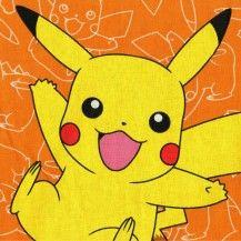 "Pokémon 24"" Panel - Multi"