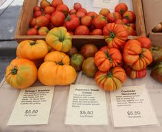 Each variety has a distinct taste.  Talk to Owner/Farmer Richard Ness while at MIFM