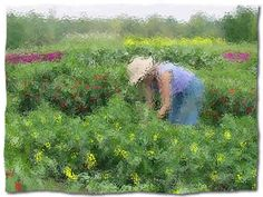 Growing Small Farms is a great Cooperative Extension website focused on small-scale, sustainable agriculture