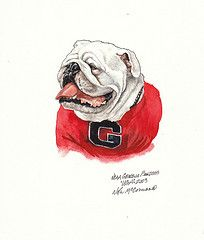 This is a highly detailed, original watercolor painting of Uga - the University of Georgia Bulldogs football team mascot. It was created as part of a collection of 15 pieces of original art celebrating the history of the uniforms of the Georgia Bulldogs NCAA football team.