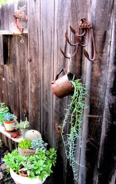 I am continually adding rustic and vintage touches to my succulent garden. I love aged wood, galvanized buckets and anything rusty and aged. My newest addition… Diy Planters, Flower Planters, Flower Pots, Flowers, Succulent Planters, Succulents In Containers, Succulents Garden, Succulent Ideas, Outdoor Plants