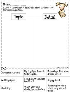 FREEBIE - Common Core Crunch - Summer Edition Topic or Detail sort