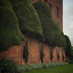 """1,841 Likes, 43 Comments - Daniel Slowik (@danielpieckielonslowik) on Instagram: """"Welsh topiary #wales"""""""