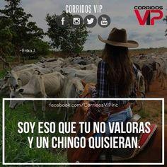 Eso exactamente.! ____________________ #teamcorridosvip #corridosvip #corridosybanda #corridos #quotes #regionalmexicano #frasesvip #promotion #promo #corridosgram - http://ift.tt/1HQJd81
