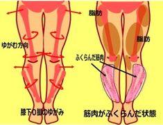 膝下О脚 腓骨の出っ張り XO脚のなおし方 | 輪郭美顔 + ボディメイク法 中目黒整体レメディオ