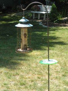 Squirrel Proof Bird Feeder? What About Those Chipmunks?
