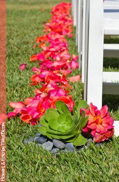Guava/coral petal path!