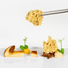 Hartige spongecake van cèpes Van, Food, Vans, Meals