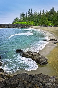 Rocky shore of Pacific Rim National park, Vancouver Island, Canada