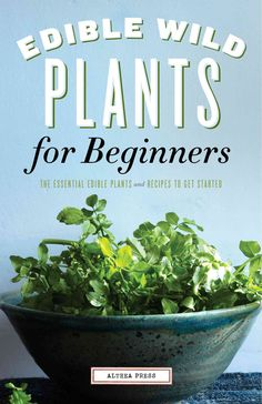 Edible Wild Plants for Beginners: The Essential Edible Plants and Recipes to Get…