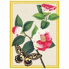 Winterthur Butterflies Everyday Embellished Notecards
