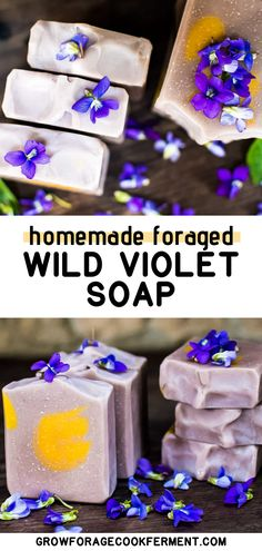 Wild Violet Soap is an all-natural, cold-processed soap recipe made with foraged wild violet herbal infusions and tinted with natural colorants. Handmade Soap Recipes, Soap Making Recipes, Organic Herbs, Organic Soap, Beginner Recipes, Herbs For Health, Homemade Shampoo, Soap Maker, Cold Process Soap