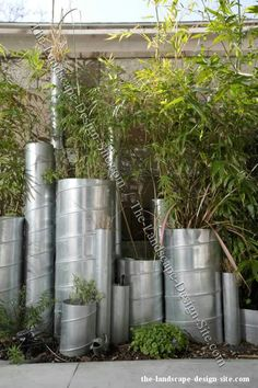 Vertical metal pipes as planters and garden decor.
