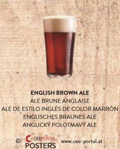 ENGLISH BROWN ALE ALE BRUNE ANGLAISE ALE DE ESTILO INGLÉS DE COLOR MARRÓN ENGLISCHES BRAUNES ALE ANGLICKÝ POLOTMAVÝ ALE Shot Glass, Ale, English, Brown, Tableware, Color, English Style, Foods, Dinnerware