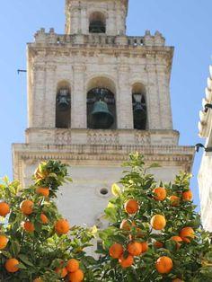 ¿La Giralda de Sevilla? No... la torre de la Iglesia de Santa María de la Oliva, en Lebrija (Sevilla)! / La Giralda in Seville? No, it's the tower of the Church Santa María de la Oliva in Lebrija (Sevilla)!