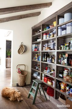 Open shelves in the pantry let you see exactly what you have at a glance. Shelves fabricated by Garrett Woodworking. Wall Paint is a custom color by Portola Paints. The old oak flooring, already distressed, is impervious to dogs.   - HouseBeautiful.com