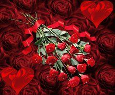 Rosas Imagenes